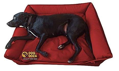 Sofá Cama Impermeable para Perro Doza: Amazon.es: Productos para mascotas