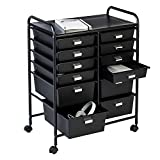 Honey-Can-Do 12-Drawer Rolling Storage and Craft
