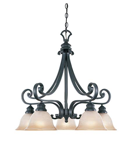 Designers Fountain 96185-NI Barcelona 5-Light Down Chandelier, Natural Iron ()