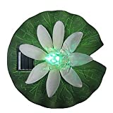 St. Petersburg 20250 Floating Frog and Water Lily Solar Light