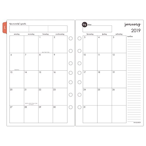 AT-A-GLANCE 2019 Daily & Monthly Planner Refill, 5-1/2