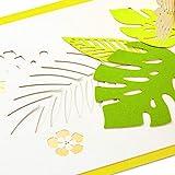 Hallmark Signature Paper Wonder Pop Up