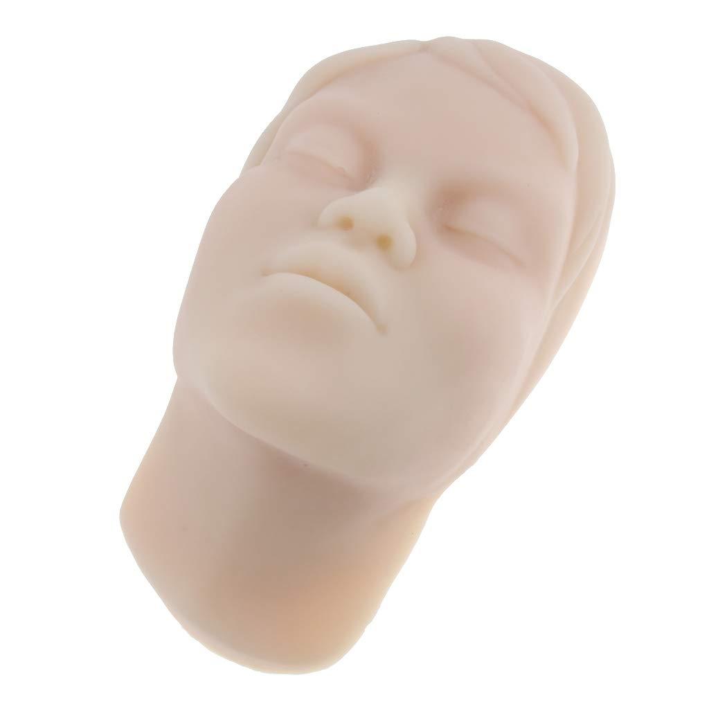 Homyl Modelo Muñeca Maniquíes de Cabeza Cara Gráficas Carteles para Educación Científica
