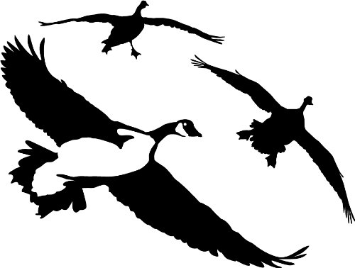 Geese Decal - 1