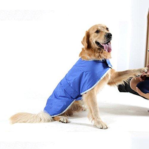 Abrigo Impermeable Para Perros Otoño E Invierno Golden Retriever Labrador Ropa De Doble Cara Para Perros Grandes ,Green-S: Amazon.es: Hogar