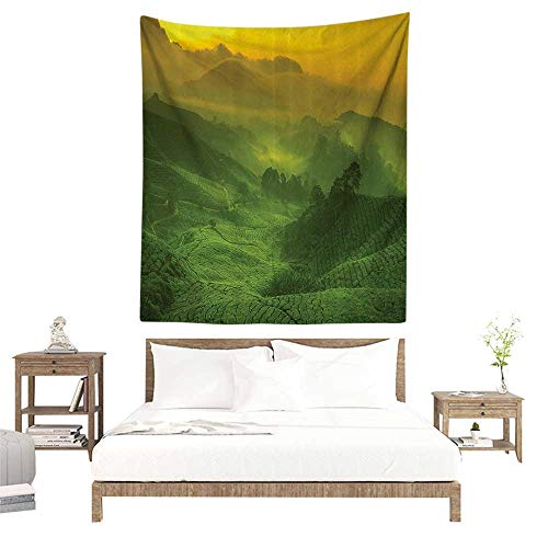 - alisoso Wall Tapestries Hippie,Room Decorations Collection,Sunrise View of Tea Plantation Field Freshness Morning at Cameron Highland Malaysia Ima W40 x L60 inch Tapestry Wallpaper Home Decor