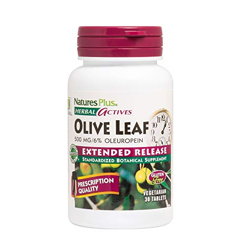 Natures Plus Herbal Actives Olive Leaf - 500 mg, 6% Oleuropein - 30 Vegan Capsules, Extended Release - Blood Pressure Support Supplement - Gluten Free, Vegetarian - 30 Servings