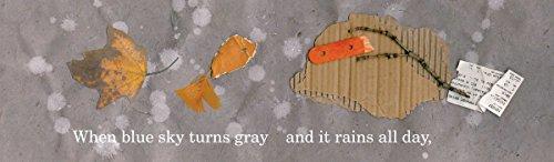 Rain Fish by Beach Lane Books (Image #1)