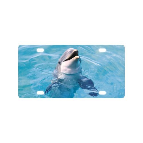 Dolphins License Plate with Personalized and Novelty -12