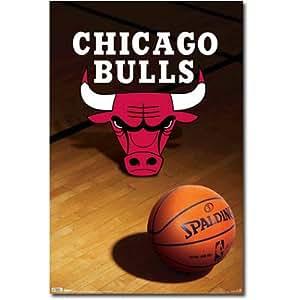Chicago Bulls (Logo, Basketball) Sports Poster Print - 22x34 Poster Print, 22x34 Poster Print, 22x34