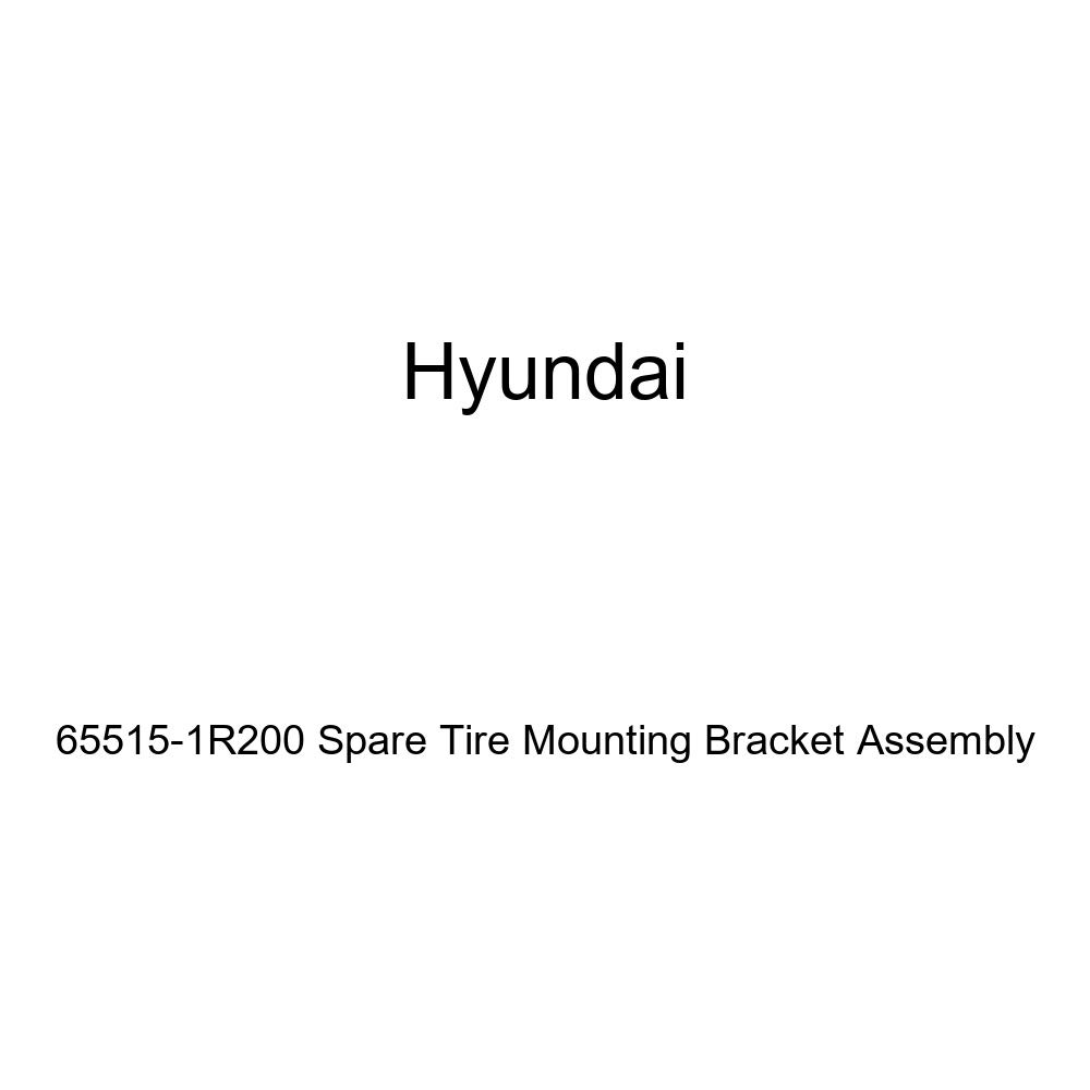 Genuine Hyundai 65515-1R200 Spare Tire Mounting Bracket Assembly