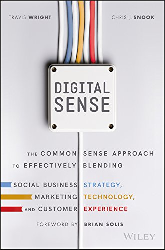 Digital Sense: The Common Sense Approach to Effectively Blending Social Business Strategy, Marketing Technology, and Customer Experience (Ideas Marketing Retail Christmas For)