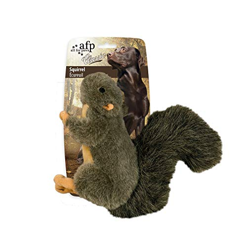 All for Paws Pet Squirrel Plush Toys, Squeaker Inside, Large