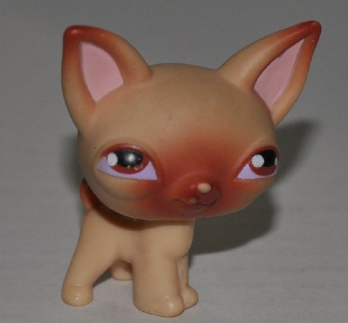 Shop Pet Loose Littlest Figure (Chihuahua #1 (Brown Eyes) - Littlest Pet Shop (Retired) Collector Toy - LPS Collectible Replacement Single Figure - Loose (OOP Out of Package & Print))