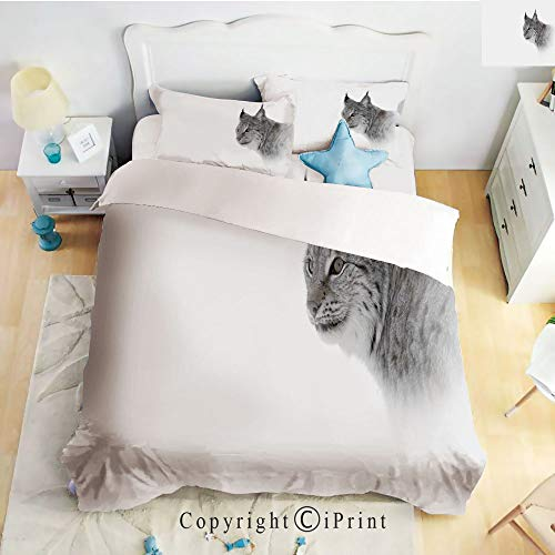 (Deep Pocket Bed Sheet Set,Lynx in Central Norway Wild Cat North Cold Snowy Mountain Carnivore Predator,Grey White,Queen Size,Wrinkle Fade Resistant,4-Piece Set)