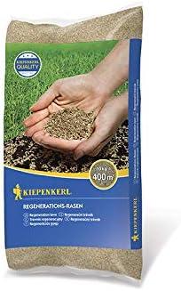 Rasensamen - Regenerations-Rasen 10 kg von Kiepenkerl