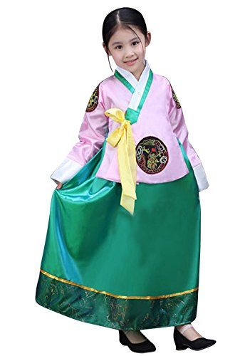[CRB Fashion Girls Traditional Kids Korean Hanbok Outfit Dress Costume (120cm, Pink Green)] (Pretty In Pink Costumes)