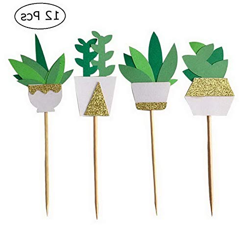Werrox Cactus Cupcake Toppers Fia Cake Toppers Picks Succulents Decor for Summer Luau Favors Pack 12pcs | Model WDDNG -3910
