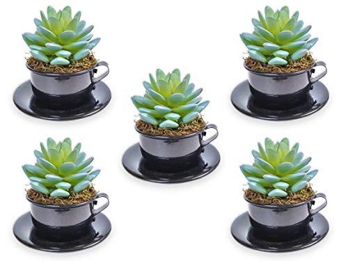 5 Mini Xícaras Preta De Suculenta Arranjo Flor Artificial