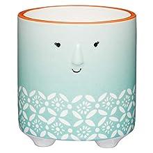 KitchenCraft - Maceta decorativa con diseño floral para interiores, tamaño pequeño, 10 x 11 cm, color verde y blanco