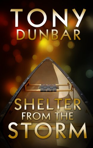 book cover of Shelter from the Storm