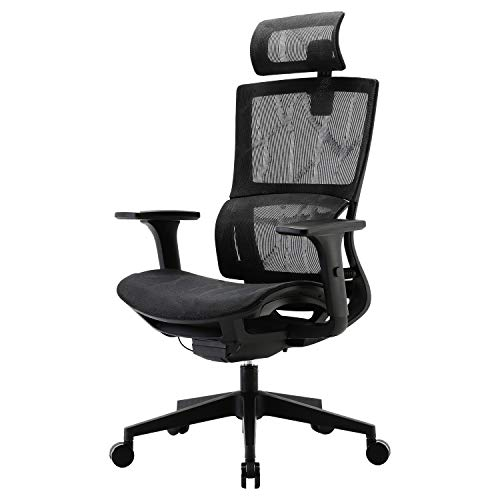 XUER Ergonomic Office Chair with Cozy Lumbar Support and Adjustable 3D Armrest, Computer Desk Chair with Mesh Seat and High Back, Multifunction for Relaxation (Black) ...