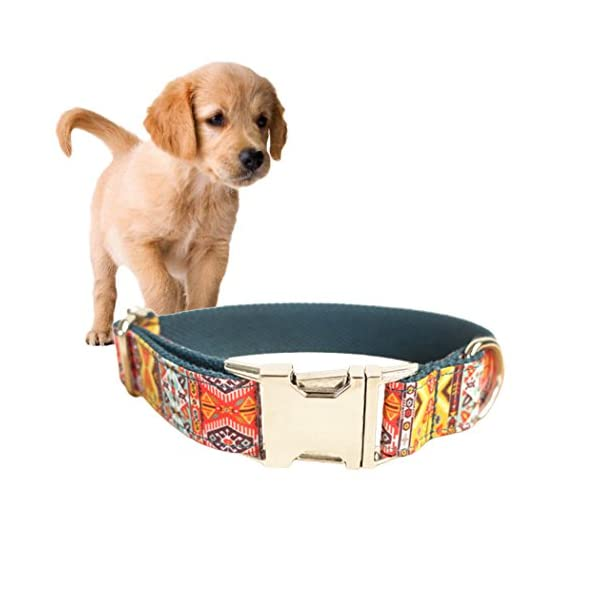 Legendog Print Dog Collar Fashionable Alloy Buckle Dog Collar Adjustable Pet Collar for Dog Cat Size M Click on image for further info. 6