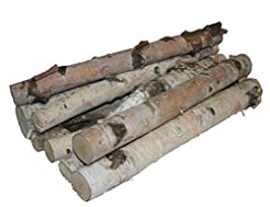 Northern white birch logs. set of 8 logs...