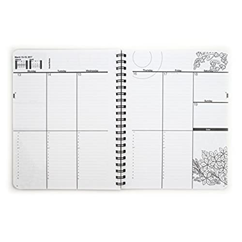 50%OFF 2017 Medium Mythical Enchantments Coloring Day Planner (7 x ...