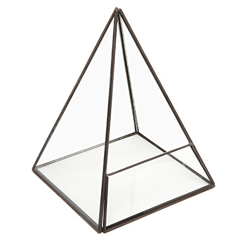 Modern Glass Pyramid Tabletop Succulent Plant Terrarium Box/Air Plant & Cacti Holder Case - MyGift by MyGift