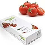 buy Garden Starter Kit (Cherry Tomato) Grow a Garden by Seed. Germinate Seeds on Your Windowsill Then Move to a Patio Planter or Vegetable Patch. Mini Greenhouse System Makes it Foolproof, Easy and Fun. now, new 2020-2019 bestseller, review and Photo, best price $9.99
