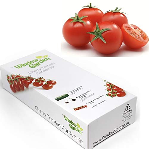 - Garden Starter Kit (Cherry Tomato) Grow a Garden by Seed. Germinate Seeds on Your Windowsill Then Move to a Patio Planter or Vegetable Patch. Mini Greenhouse System Makes it Foolproof, Easy and Fun.