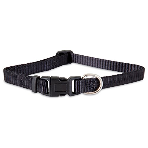 "Aspen Pet Products Adjustable Collar, 8-14"" x 3/8"", Black"