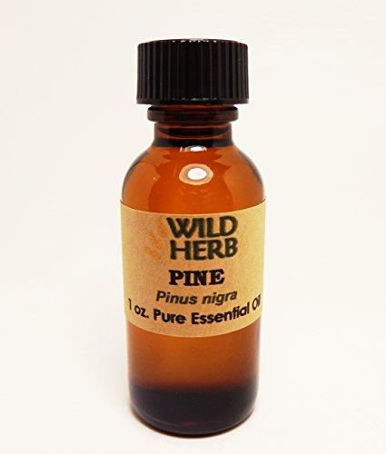Bulk Black Pine Essential Oil Organic (32 oz)
