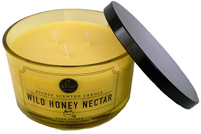 DW Home Large Triple Wick Candle, Wild Honey Nectar