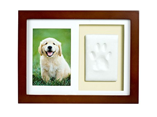 Tiny Ideas Dog or Cat Paw Print Keepsake Wall Frame Kit