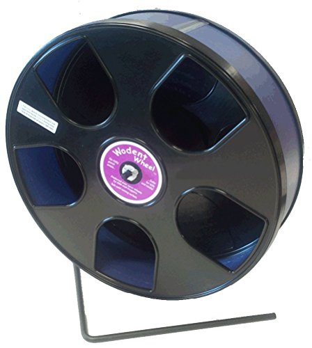Transoniq Rodent - Semi-Enclosed Exercise Wodent Wheel 'Sr.' 11 inch size Blue by by Transoniq (Image #1)