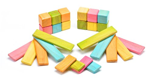 26 Piece Tegu Discovery Magnetic Wooden Block Set, Tints by Tegu