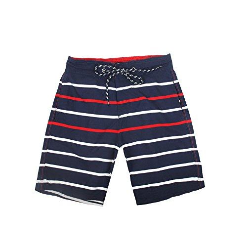 (FAFNIR Men's Swim Trunks Quick Dry Swim Board Shorts with Mesh Lining,Blue Striped,Size M)