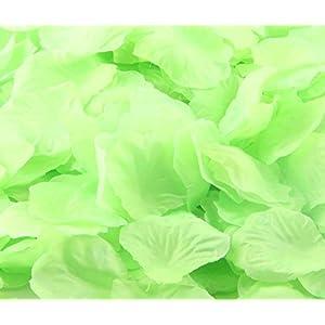 CO-RODE Wedding Decoration Silk Rose Petals Artificial Flower Pack of 4000 Light Green 6
