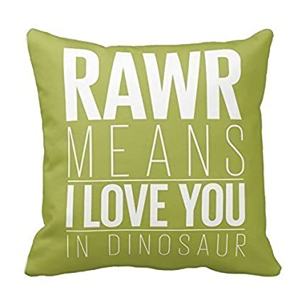 49c823ec9 Ashasds Rawr Means I Love You In Dinosaur Decorative Throw Pillow Covers  with Zips Accent Pillows