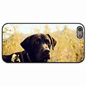 iPhone 5 5S Black Hardshell Case dog muzzle grass light Desin Images Protector Back Cover