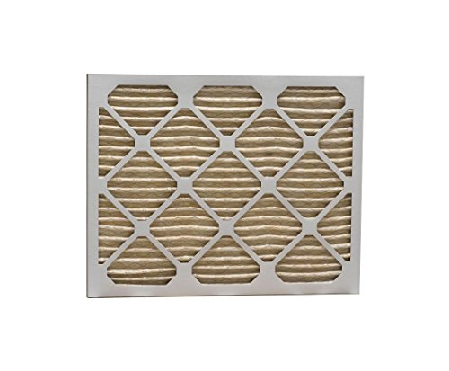 Eco-Aire P15S.011317 MERV 11 Pleated Air Filter, 13 x 17 x 1""