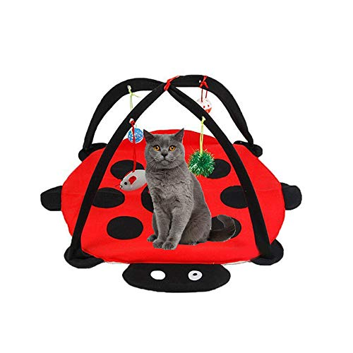 DotPet Cat Play Mat Bed, Cat Tent Activity Center with Hanging Toy Bell Balls Mice & More - Helps Cats Get Exercise & Stay Active Play Toy for Cats Kitten ()