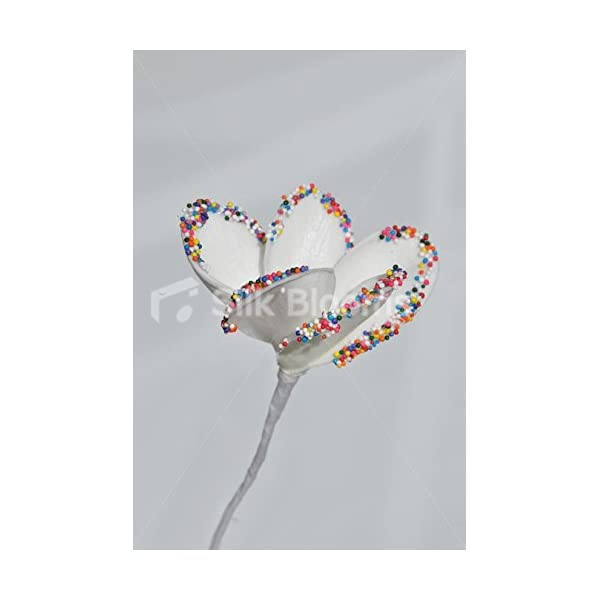 Fresh Touch Candy Tipped Frangipani Loose Stem