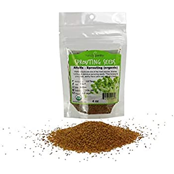 Handy Pantry Organic Alfalfa Sprouting Seed - 4 Oz Brand - High Sprout Germination- Edible Seeds, Gardening, Hydroponics, Growing Salad Sprouts, Planting, Food Storage & More
