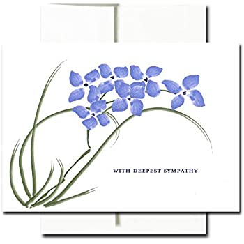 Amazon hallmark assorted sympathy greeting cards flowers sympathy cards violets box of 30 blank note cards and 32 envelopes thecheapjerseys Images