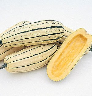 Todd's Seeds Delicata Winter Squash Heirloom Seed - 7g Seed Packet