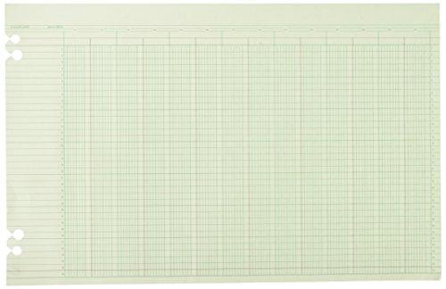 Acco Wilson Jones Ledger Paper, 24 Columns and 36 Lines/P...