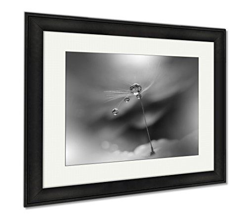 Ashley Framed Prints Abstract Macro Photo With Dandelion And Water Drops Artistic For Desktop, Wall Art Home Decoration, Black/White, 26x30 (frame size), Black Frame, AG6579049 by Ashley Framed Prints